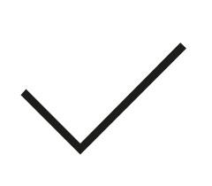 Icon Einfachheit