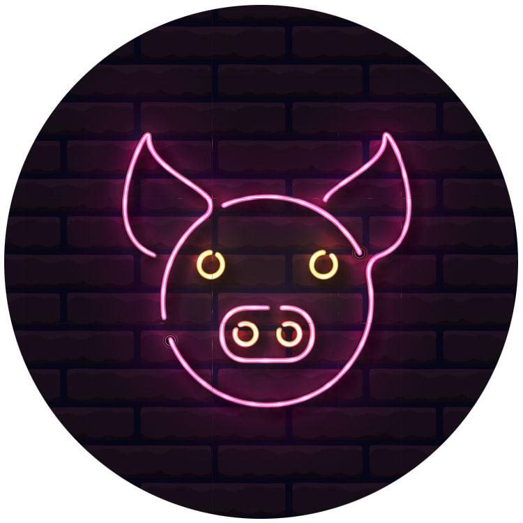 Symbolbild Schweinerennen